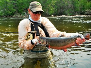 brook-trout-2015