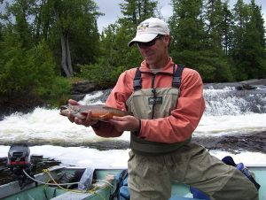 fast-water-brook-trout