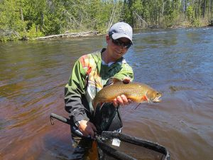 river-brook-trout