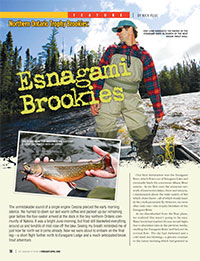 Esnagami Brookies