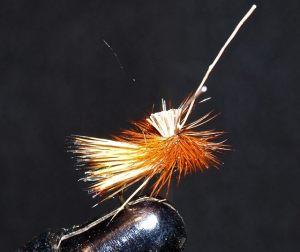 esnagami-fly-4