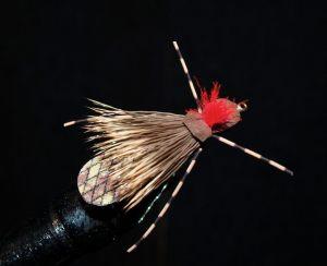 esnagami-fly-8