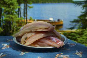 walleye-fillets