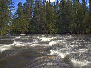 esnagammi-river7